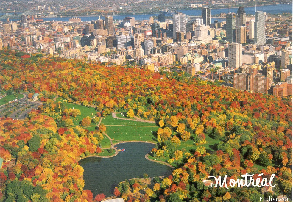 mont-royal-1